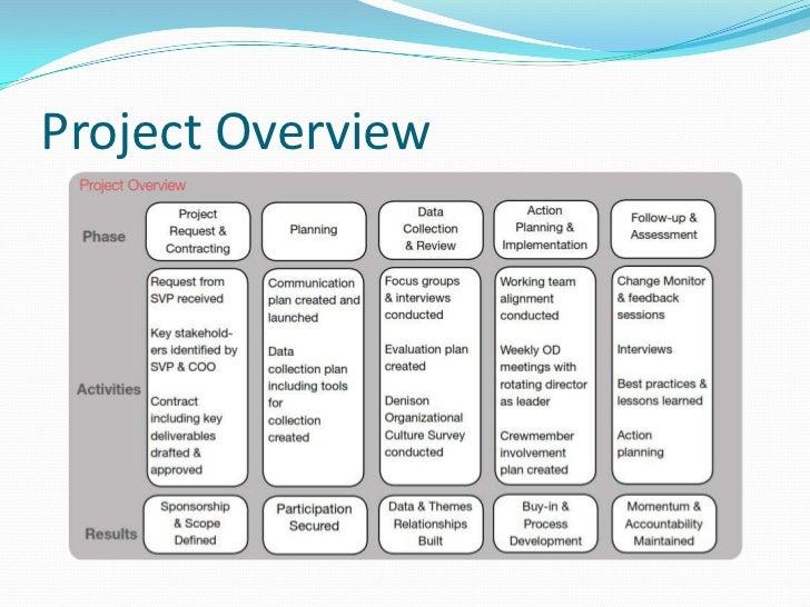 organizational development case study analysis