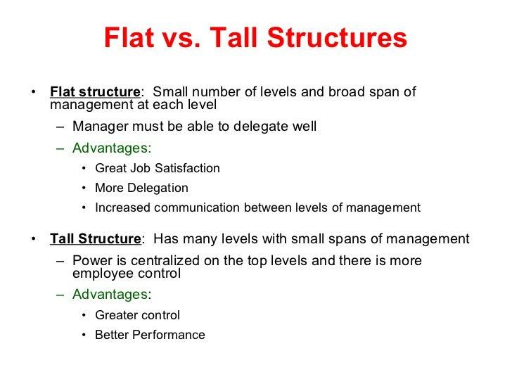 tall and flat organisational structure business essay Organization structure of maruti suzuki business essay the organization structure of maruti is somewhat inclined tall and flat organizational structure finale.