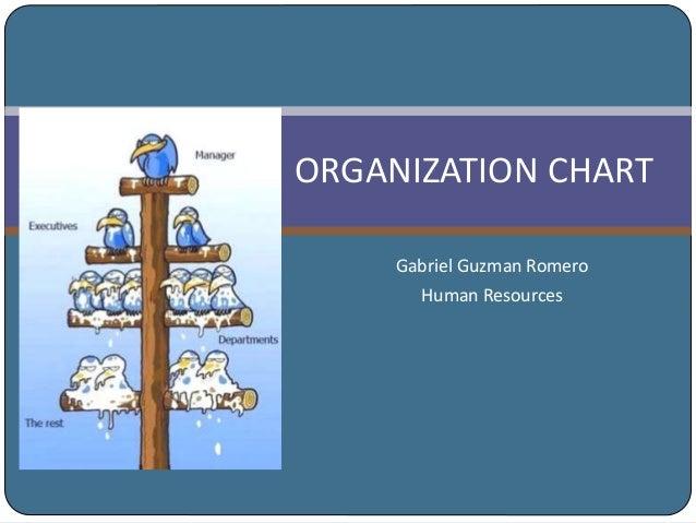 ORGANIZATION CHART Gabriel Guzman Romero Human Resources