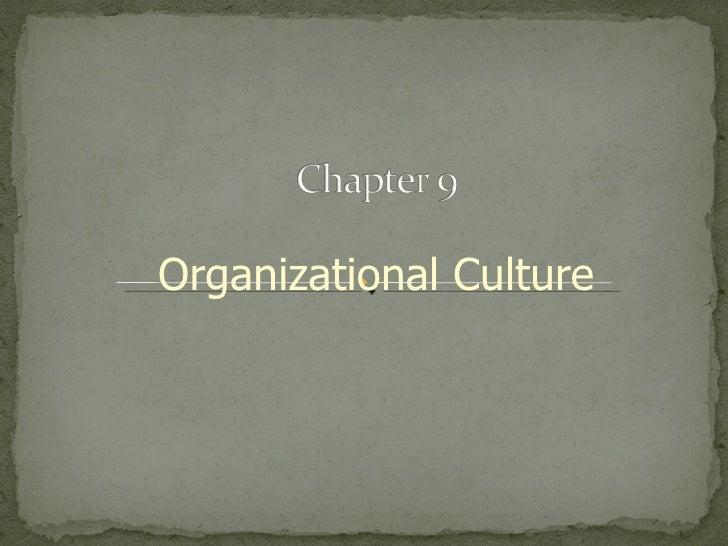 Organization culture sag