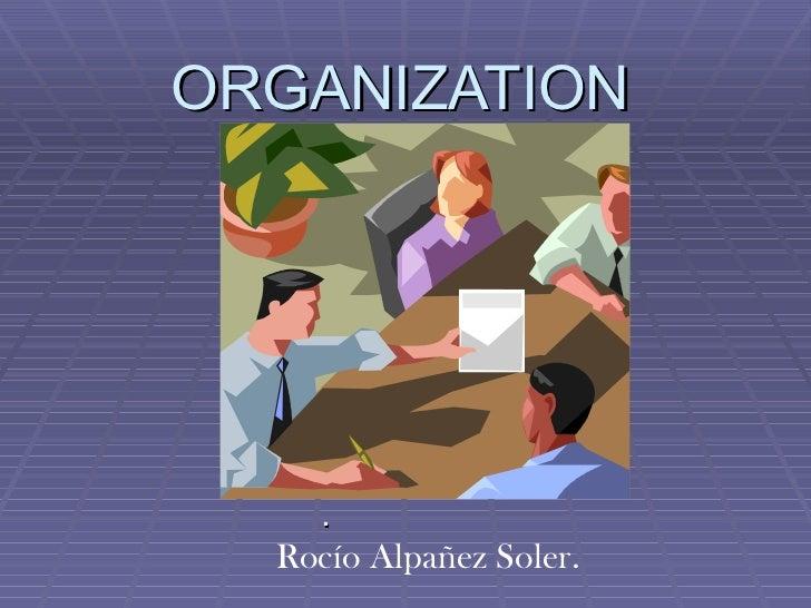 Organization rocio
