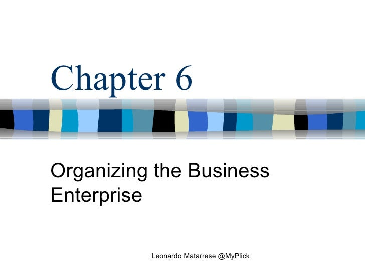 Organizing The Business Enterprise Leonardo Matarrese