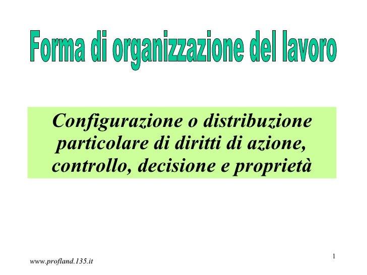Configurazione o distribuzione       particolare di diritti di azione,      controllo, decisione e proprietà              ...