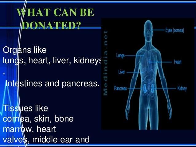 Organ donation persuasive essay
