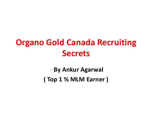 Organo Gold Canada Recruiting Secrets Exposed: Organo Gold Canada Recruiting Tricks