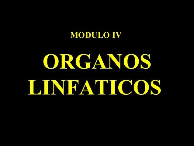 MODULO IVMODULO IV ORGANOSORGANOS LINFATICOSLINFATICOS