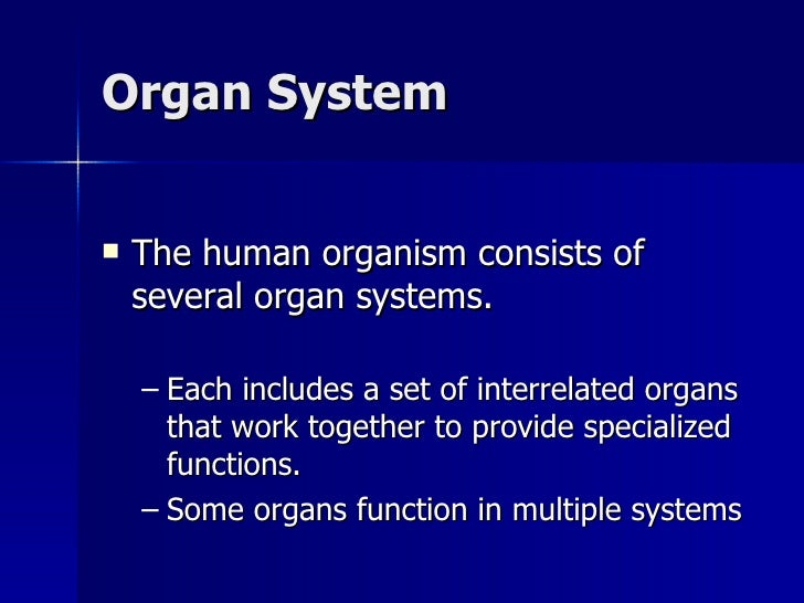 a p ch01 organ systems overview Overview of dynamical systems 1–1 chapter1: particle a body whose spatial extent and internal configuration are p 512], the intended meaning.