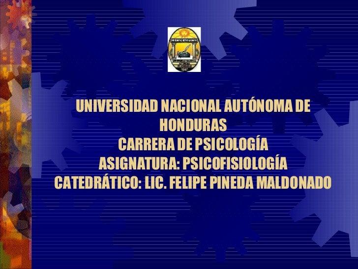 UNIVERSIDAD NACIONAL AUTÓNOMA DE HONDURAS CARRERA DE PSICOLOGÍA ASIGNATURA: PSICOFISIOLOGÍA CATEDRÁTICO: LIC. FELIPE PINED...