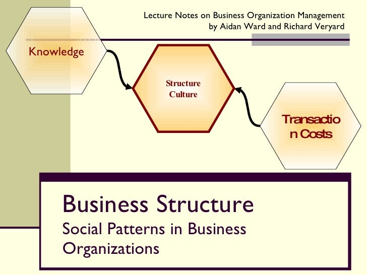 Business Structure Social Patterns in Business Organizations Knowledge Transaction Costs Structure Culture