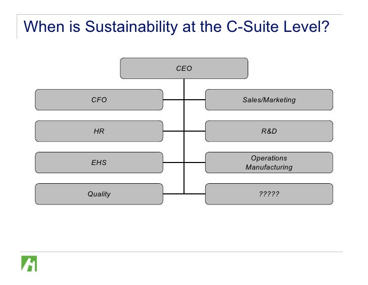 Org Structure Amp Sustainability Amr 20090212