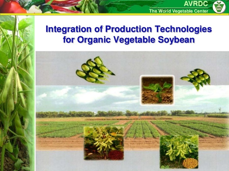 AVRDC                       The World Vegetable CenterIntegration of Production Technologies    for Organic Vegetable Soyb...