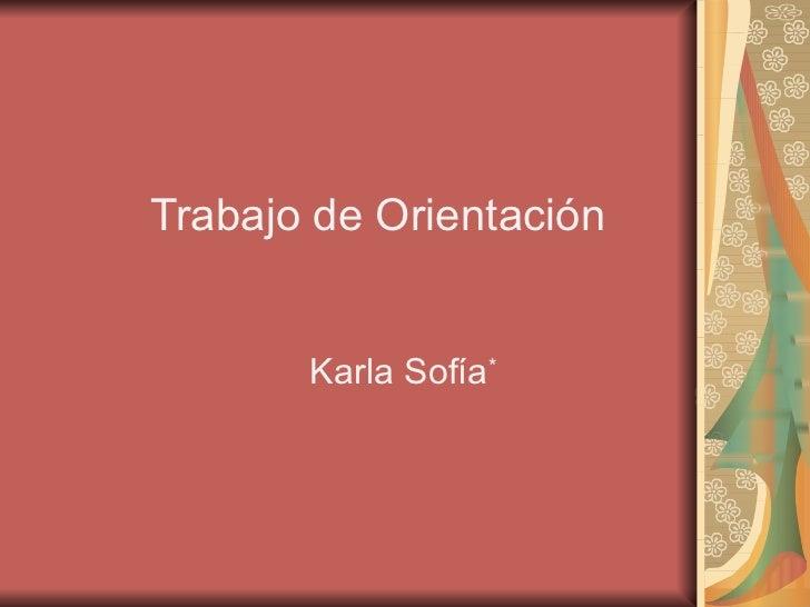 Trabajo de Orientación   Karla Sofía *