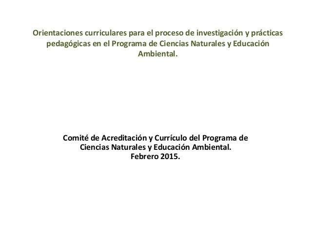 Orientaciones curriculares para el proceso de investigación y prácticas pedagógicas en el Programa de Ciencias Naturales y...