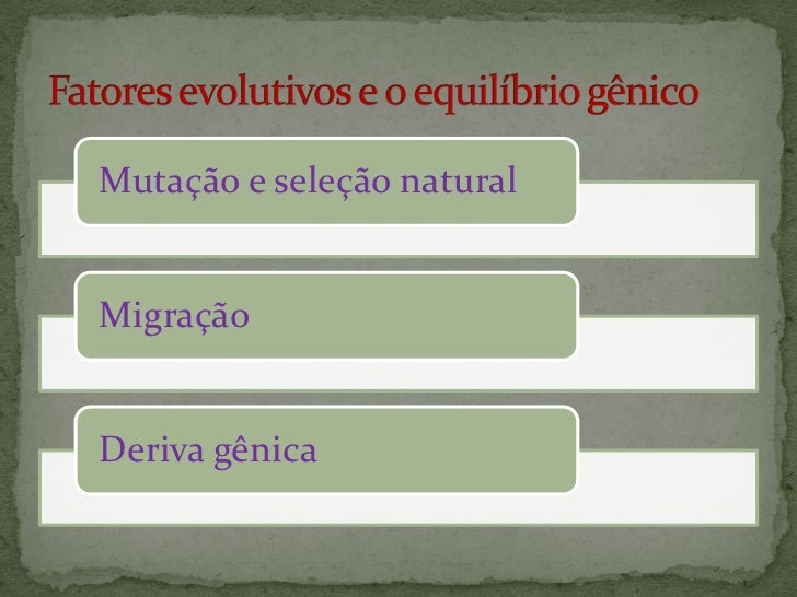 Origem das espécies e dos grandes grupos de seres vivos.