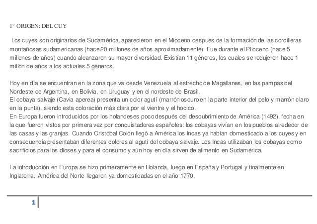 Crianza De Cuy Es Slideshare | apexwallpapers.com