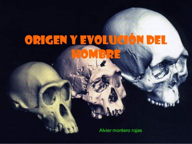ORIGEN Y EVOLUCIÓN DEL HOMBRE Alvier montero rojas