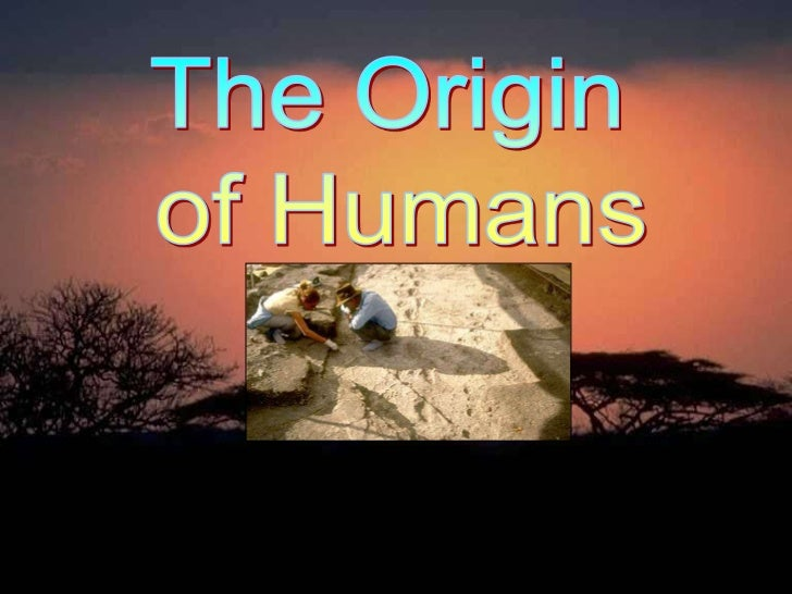 Origin ofhumans3