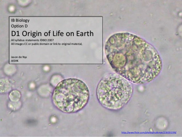 IB Biology Option D D1 Origin of Life on Earth All syllabus statements ©IBO 2007 All images CC or public domain or link to...