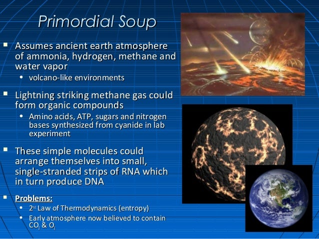 an introduction to the primordial soup theory Of the various theories of precellular life, the leading contender is the rna world   at present, the gap from the primal 'soup' to the first rna system capable of   10 may 2012: the definition of life and speculations about its origin(s) by.