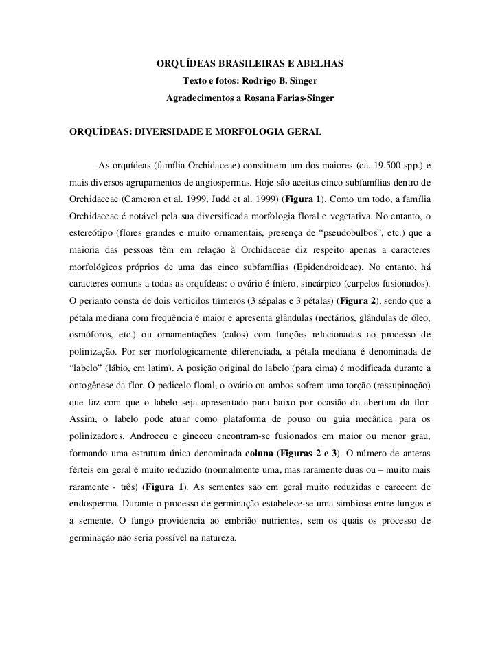 ORQUÍDEAS BRASILEIRAS E ABELHAS                             Texto e fotos: Rodrigo B. Singer                        Agrade...