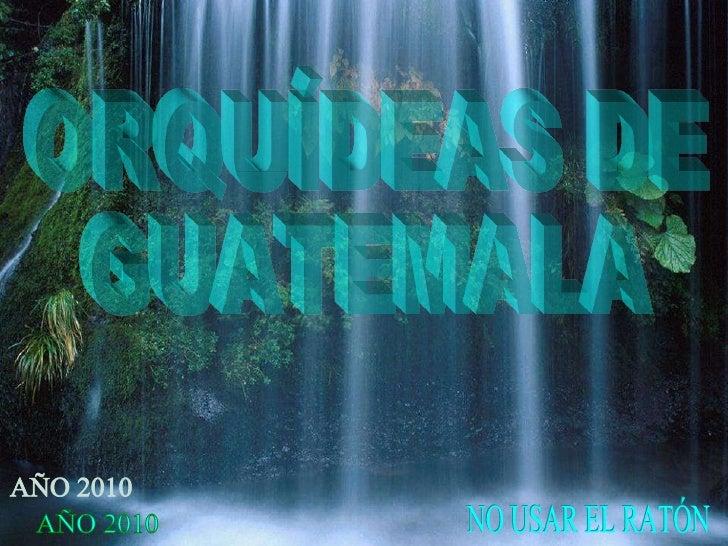 ORQUÍDEAS DE GUATEMALA NO USAR EL RATÓN AÑO 2010