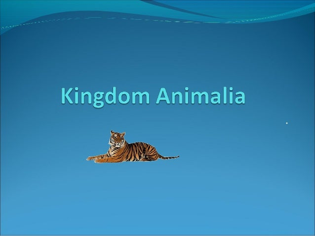 Orteza edited part 1 animal kingdom 97