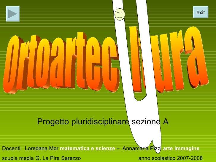 Ortoartecultura
