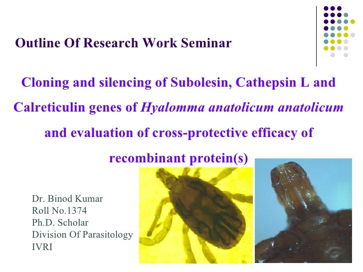 Outline Of Research Work Seminar Cloning and silencing of Subolesin, Cathepsin L andCalreticulin genes of Hyalomma anatoli...