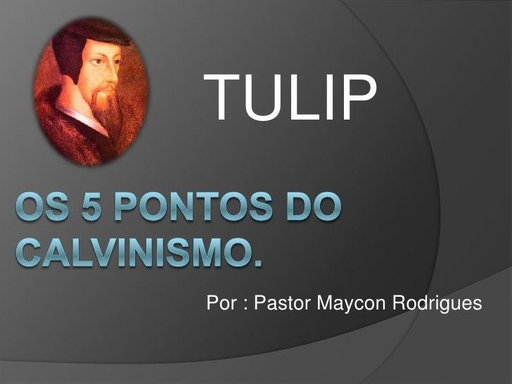 TULIP<br />Os 5 Pontos do calvinismo. <br />Por : Pastor Maycon Rodrigues<br />