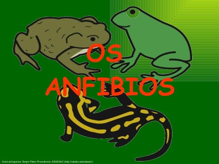 Os anfibios
