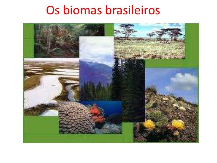 Os biomas brasileiros ......