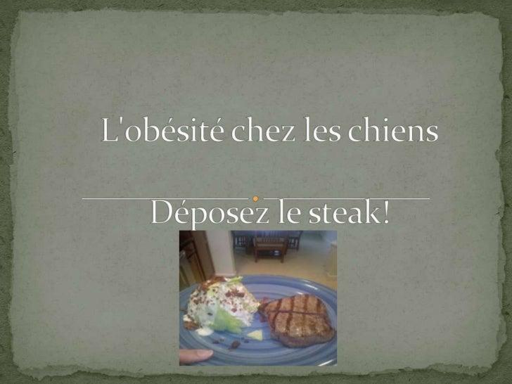 L'obésité chez les chiensDéposez le steak!<br />