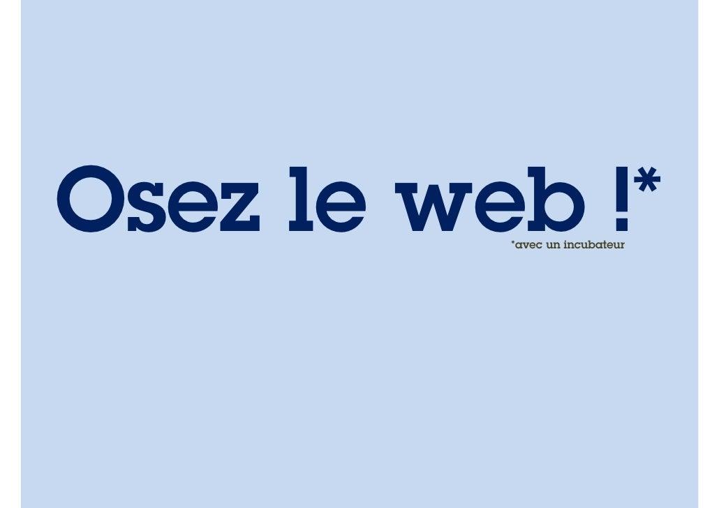 OsezLeWeb 2012 - Tout sur les incubateurs - Guilhem Bertholet