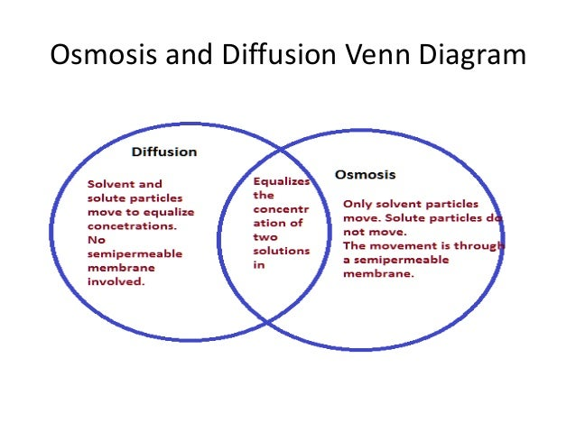 Diffusion and Osmosis | Chemistry@TutorVista.com