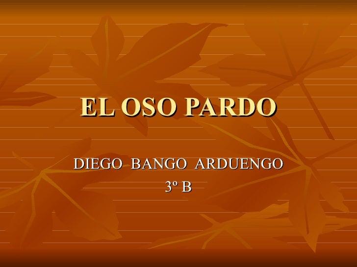 EL OSO PARDO DIEGO  BANGO  ARDUENGO 3º B