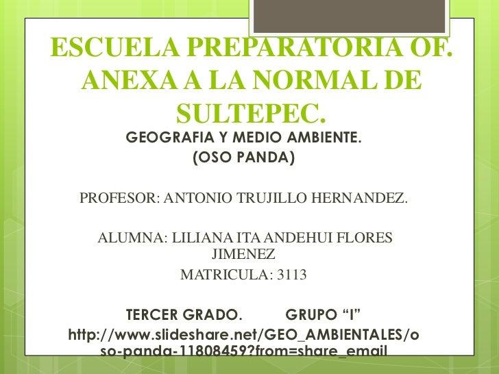 ESCUELA PREPARATORIA OF.  ANEXA A LA NORMAL DE       SULTEPEC.        GEOGRAFIA Y MEDIO AMBIENTE.              (OSO PANDA)...