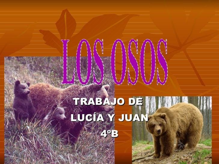 TRABAJO DE  LUCÍA Y JUAN 4ºB LOS OSOS
