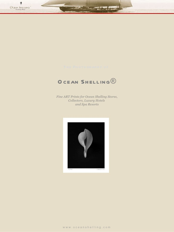 Os seashells prints_price_list