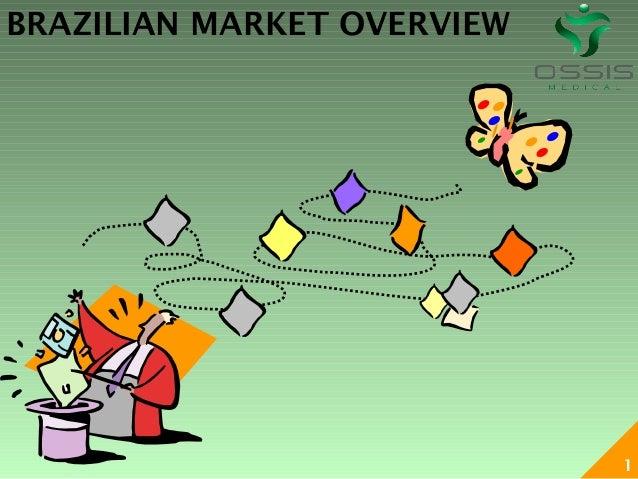BRAZILIAN MARKET OVERVIEW                            1