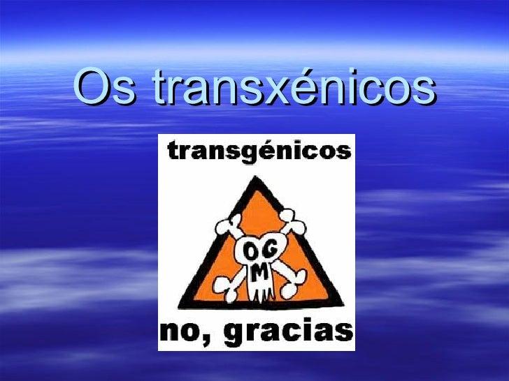 Os transxénicos