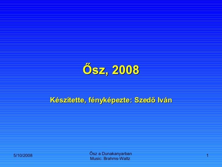 Osz 2008