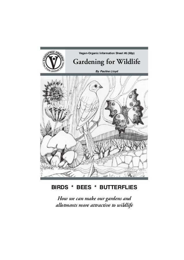 Vegan-Organic Information Sheet #6 (60p)  Gardening for Wildlife By Pauline Lloyd  BIRDS * BEES * BUTTERFLIES How we can m...