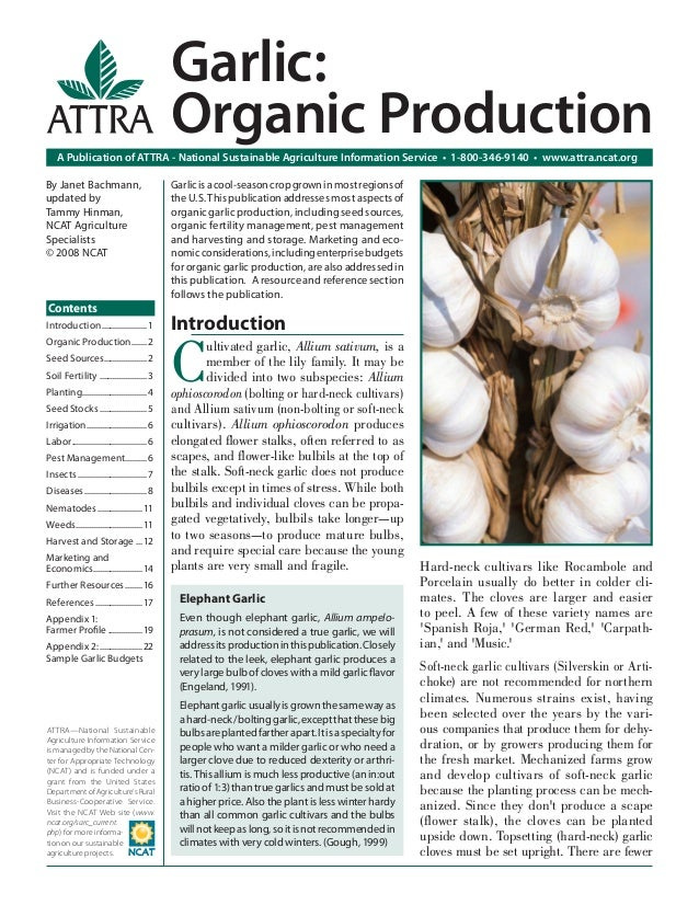 Garlic: Organic Production A Publication of ATTRA - National Sustainable Agriculture Information Service • 1-800-346-9140 ...