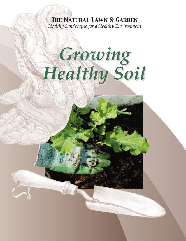Growing Healthy Soil - Natural Lawn & Garden