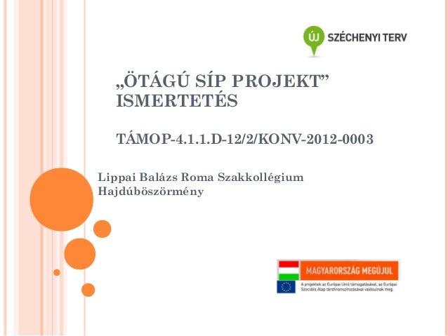 Otagu Sip Projekt