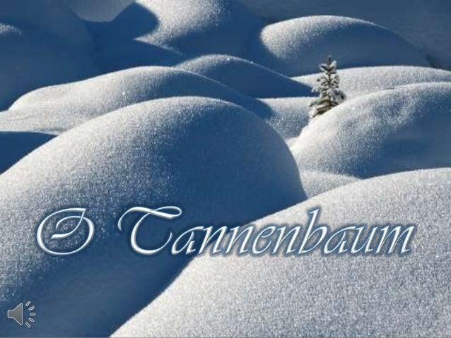 O tannenbaum (v.m.)