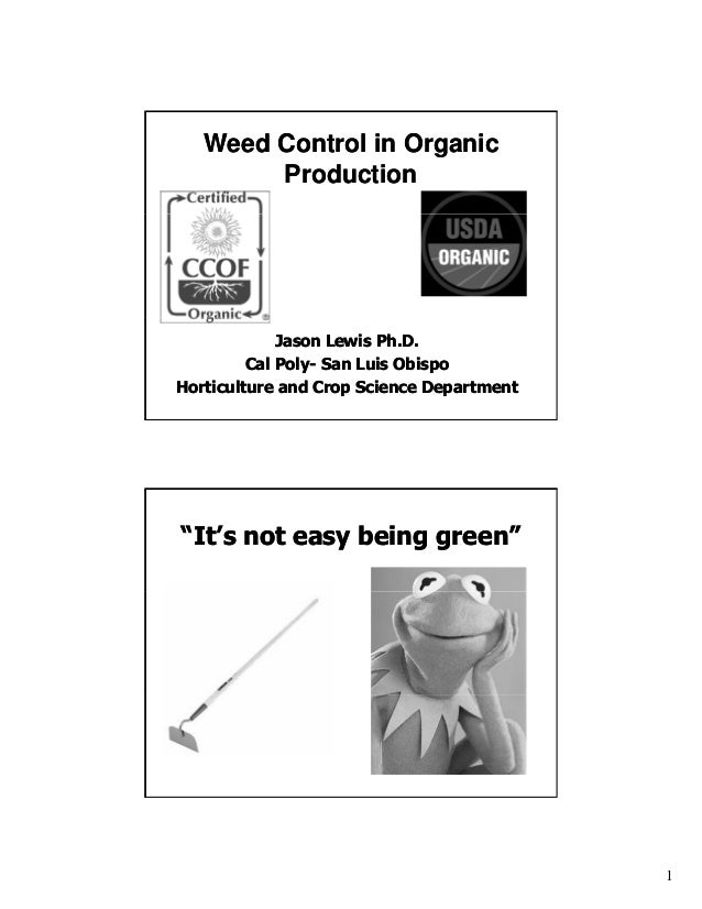 Weed Control in Organic Production  Jason Lewis Ph.D. Cal Poly- San Luis Obispo PolyHorticulture and Crop Science Departme...