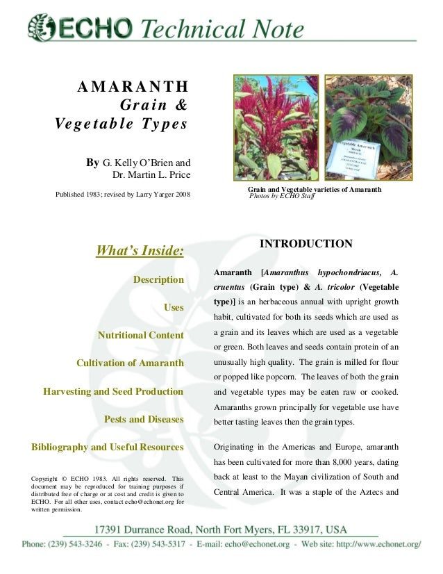 AMARANTH Grain & Ve g e t a b l e Ty p e s By G. Kelly O'Brien and Dr. Martin L. Price Published 1983; revised by Larry Ya...
