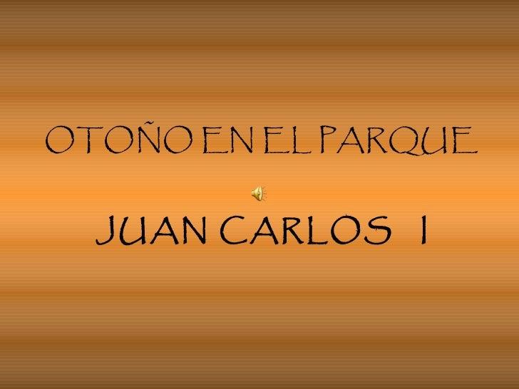 OTOÑO EN EL PARQUE    JUAN CARLOS  I
