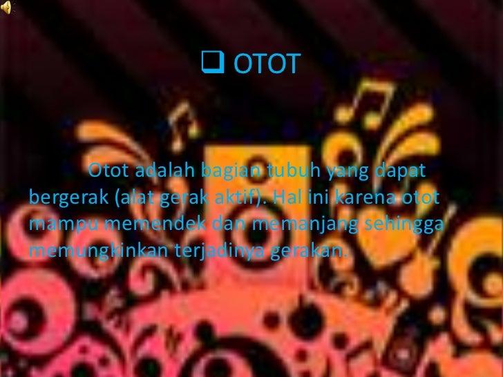  OTOT      Otot adalah bagian tubuh yang dapatbergerak (alat gerak aktif). Hal ini karena ototmampu memendek dan memanjan...